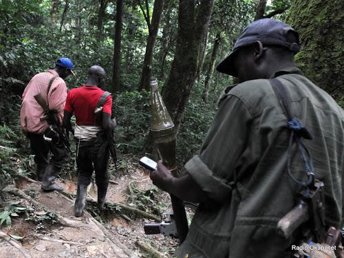 Des rebelles FDLR à Pinga, dans  l'Est de la RDC  (Photo: Radio Okapi