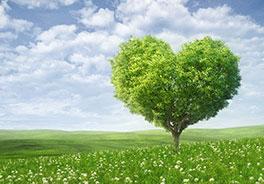 Comment créer de l'Amour en permanence